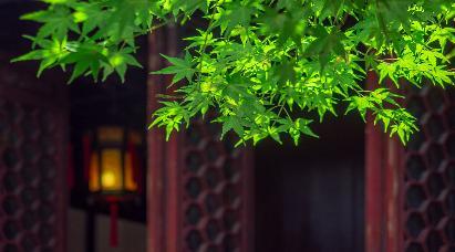 【品蟹 特惠团】<华东五市、红色记忆沙家浜、 VIP豪华秋色品蟹5天团>