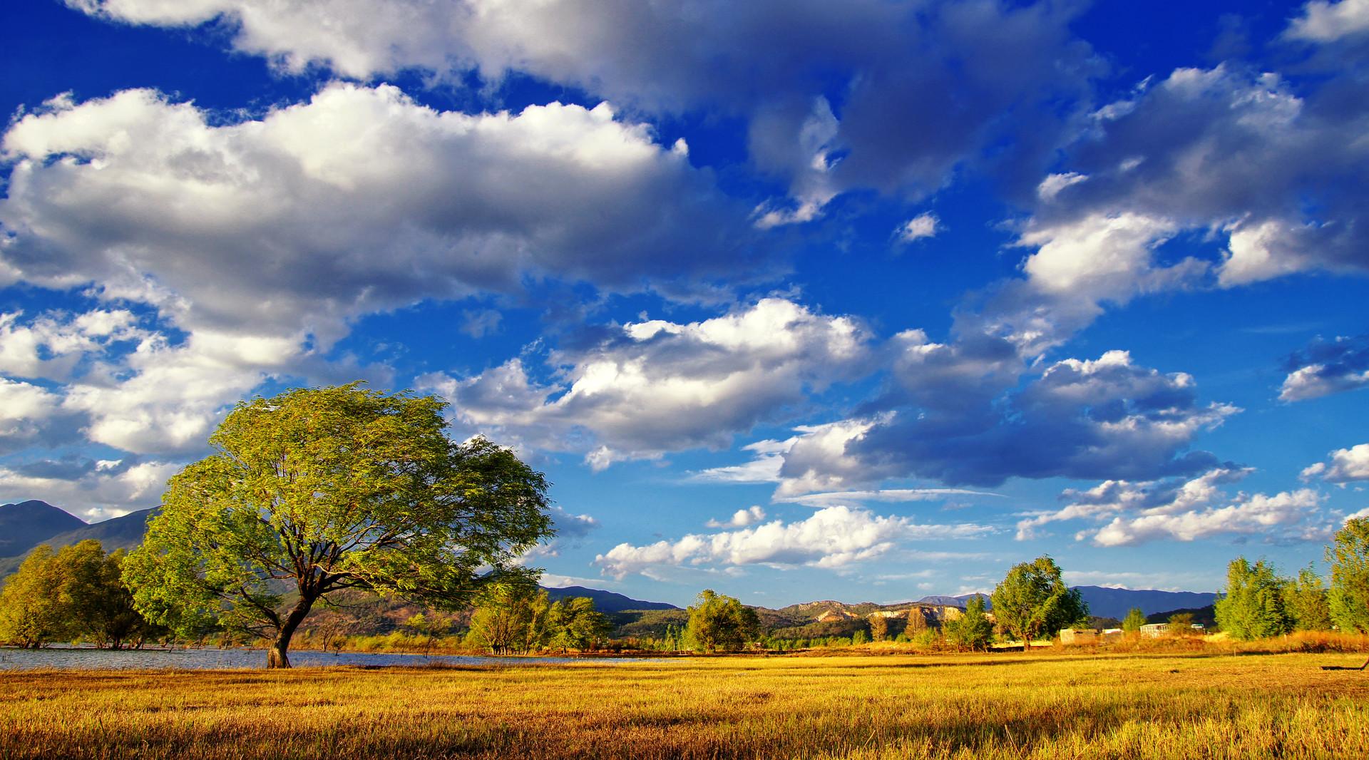 【国庆纯玩LV】<玉龙雪山、虎跳峡、香格里拉普达措国家森林公园噶丹、路南大石林双飞6天(丽进昆出)>