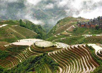 龙胜龙脊梯田景区是广西著名风景区,始建于元朝,距今已有近700年的