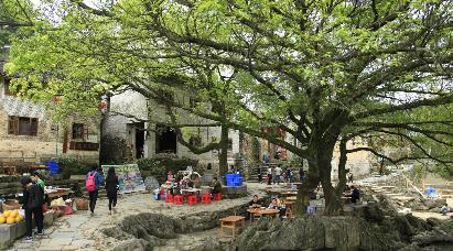 【长寿贺州】<贺州黄姚古镇、十八水、玉石林三天高铁团 >