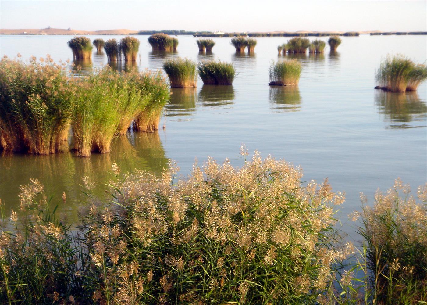 大美青海湖,塔尔寺