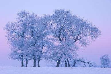 【黑+吉·两省联游】<哈尔滨.亚布力.镜泊湖瀑布.长白雪乡.魔界摄影.吉林雾凇>双飞6天团