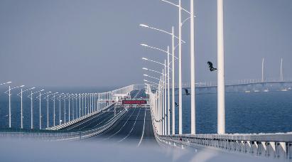 【纯玩】<港珠澳大桥、澳门纯玩一天游>含葡式自助餐