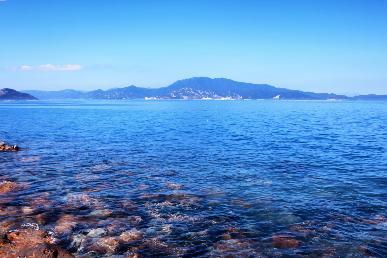 【蓝-遇】< 深圳南澳 帆船出海 + 蓝谷驿站 + 官湖沙滩 1日游>