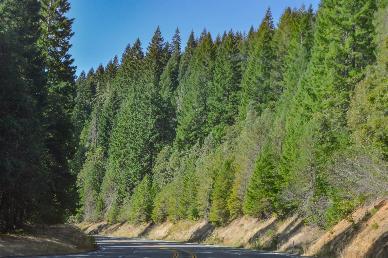 【三国联游】<美国加拿大墨西哥+大瀑布+大峡谷国家公园+圣塔芭芭拉+海滨1号公路17天深度品质团>